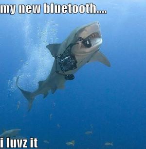funny_pictures_shark_bluetooth_SHARK_WEEK_2010-s576x600-82947-580.jpg