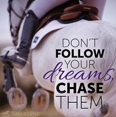 Great Horse Quotes
