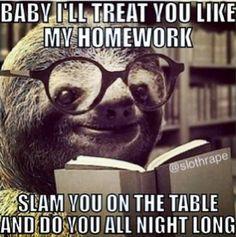 sloth pick up lines more pickup hilarious pick bad pick naughty sloths ...