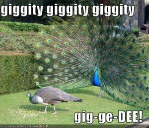 Funny Peacock