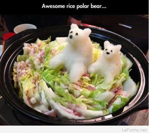 Funny Rice polar bears