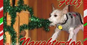 Funny-dog-christmas-card-cards-doggy-holiday-feliz-navidad-460x240.jpg