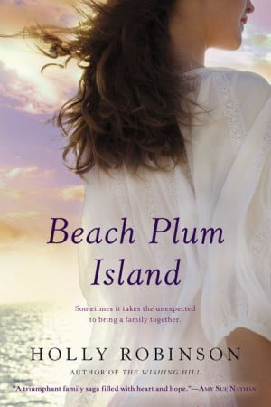 BEACH PLUM ISLAND by Holly Robinson -- the journey to discover a ...