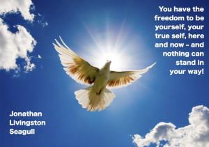 Jonathan Livingston Seagull.Life Quotes, Fly High, Jonathan Livingston ...