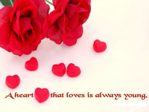 Top 5 Best Love Quotes in 2013