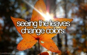 Seeing the leaves change colors