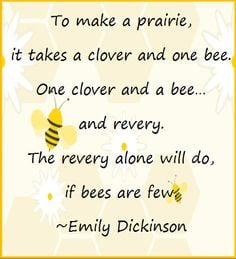 Quotes, Thoughts, & Sayings About Bees