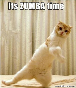 cat-it-is-zumba-time-funnyblog