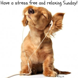 Have a relaxing Sunday!Puppies, Ipods, Pets, Ears, Listening To Music ...