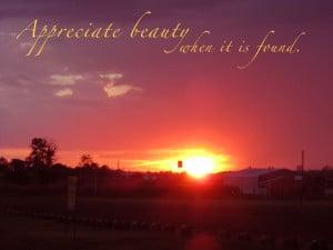 Appreciate Beauty when it is Found – Beauty Quote