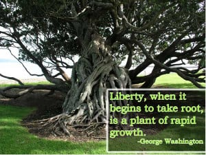 Freedom Image Quotes And Sayings