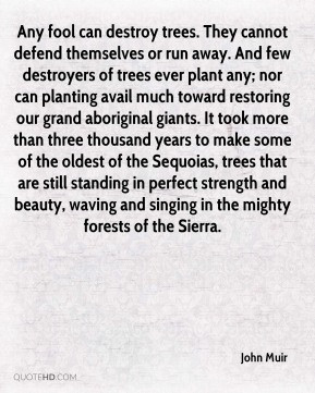 Trees Quotes