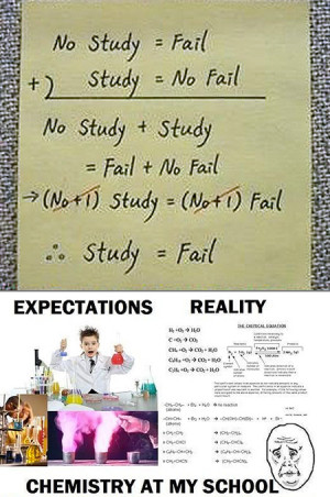 Studying Students Funny What studying really means for