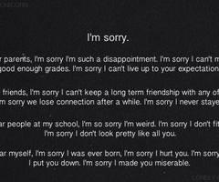 Im Sorry Im Not Good Enough Quotes Im Sorry Im Not Good Enough