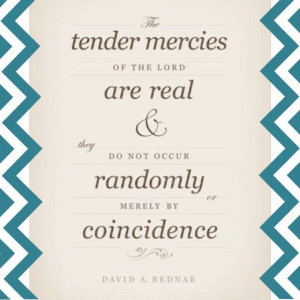 ... Tender Mercy, or Just a Bird? www.brianmickelson.com #mormon #lds