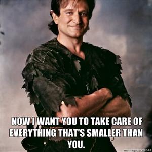 Quotes #9 Robin Williams