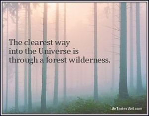 ... way into the Universe is through a forest wilderness. John Muir Quotes
