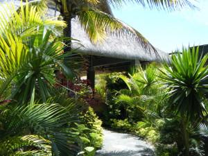 hotel gardens photo de veranda palmar beach belle mare