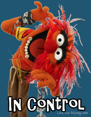 the same movie i have chosen the muppets 2011 version