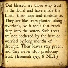 Verse of the day!!! Never let your environment or circumstances steal ...
