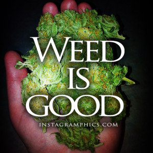 Weed Is Good Quote Graphic