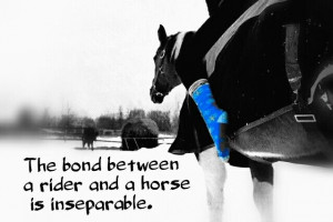 ... Quotes Mems, Horses Cowgirls Country Girls, Hors Talk, Horses Bond