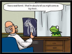 Kermit the frog joke