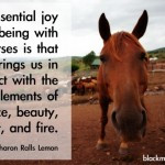 Cute Horse Quotes For Girls Horse Quote Tattoos For Girls Cute ...