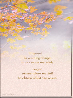 greed quotes, anger quotes, Buddhist sayings