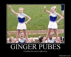 Ginger Pubes - Demotivational Poster