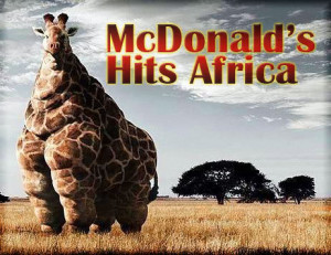Fat giraffe by yo780