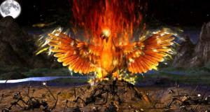 Phoenix Bird Fire Mythological