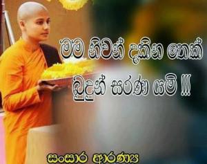 Buddhist Women as Upasikas (Female lay followers)