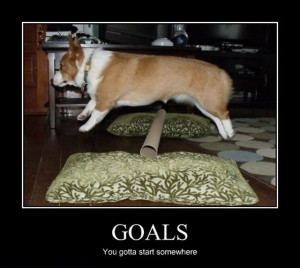 ... Just make good goals and I wish you you will rich them like this dog