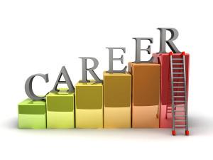 Climbing the Social Work Career Ladder Christy Rakoczy