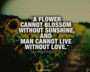 flower cannot blossom without sunshine, and man cannot live without ...