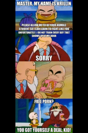 How Krillin REALLY got his training!