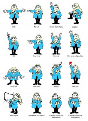 Umpire Signals Image Credited