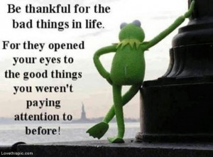 the bad things in life life quotes quotes quote life kermit the frog