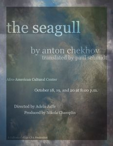 The Seagull Photo Stephen Vaughan