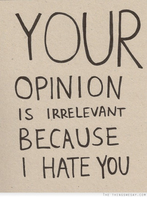 Your Opinion Is Irrelevant Because I Hate You - Opinion Quotes