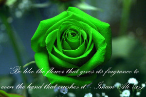 Imam Ali (AS) Hadith (Narration/Quote) by Sheikh1