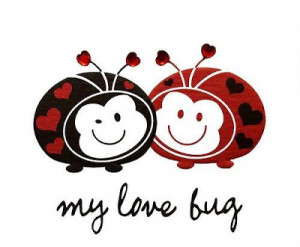 You Are Here Pics The Love Bug