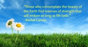 30 Thought Provoking Earth Day Quotes