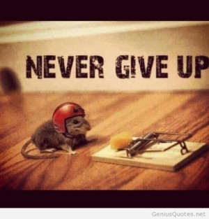 Funny never give up image quote message