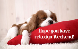 relaxing-weekend.jpg#relaxing%20weekend%20640x400