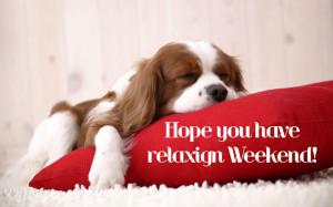 relaxing-weekend.jpg#relaxing%20weekend%20640x400