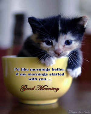 ... cat wallpaper ! Heart touching good morning images with quotes ! Heart