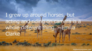 Top Quotes About Horses And Riding