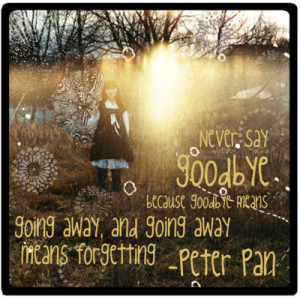 Never say goodbye because goodbye means going away, and going away ...